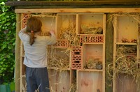 Une petite fille participe à la construction d'un hôtel pour insectes
