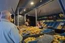 De Jetse zondagsmarkt herneemt op 24 mei